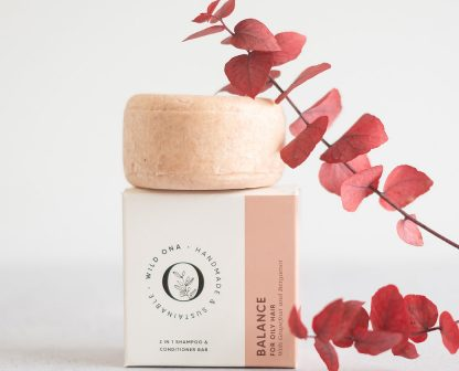 BALANCE shampoo bar for oily hair types by Wild Ona   Available at Sage Folk